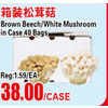 Brown Beech/White Mushroom in Case - $38.00/case
