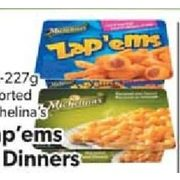 michelinas zapems coupons